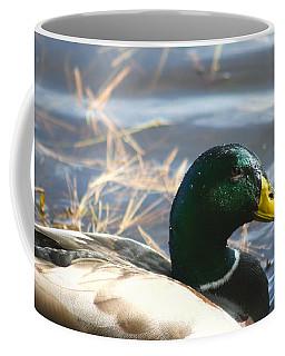 Mallard Anas Platyrhynchos Coffee Mug by Neal Eslinger