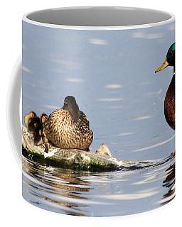 Mallard Family Coffee Mug