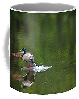 Mallard Splash Down Coffee Mug