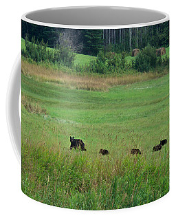 Coffee Mug featuring the photograph Mama Bear And 4 Cubs by Mary Lee Dereske