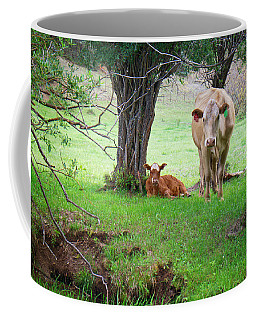 Coffee Mug featuring the photograph Mama Cow And Calf by Mary Lee Dereske