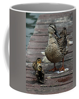 Mama Duck And Ducklings Coffee Mug