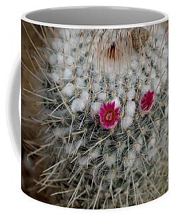 Mammillaria Geminispina Coffee Mug