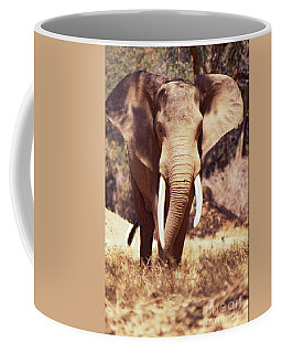 Mana Pools Elephant Coffee Mug