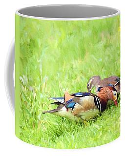 Mandarin Duck Couple Coffee Mug