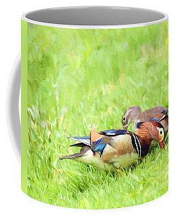 Mandarin Duck Couple Coffee Mug by Kerri Farley