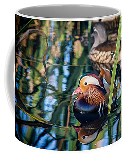 Mandarin Duck Reflections Coffee Mug