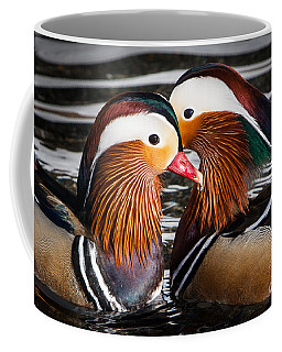 Mandarin Lovers Coffee Mug