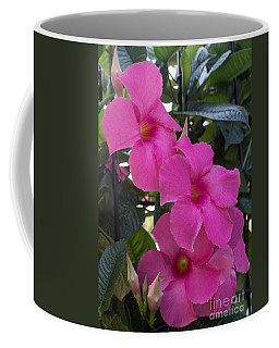 Mandevilla Beauty Coffee Mug