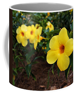 Mandevilla Coffee Mug
