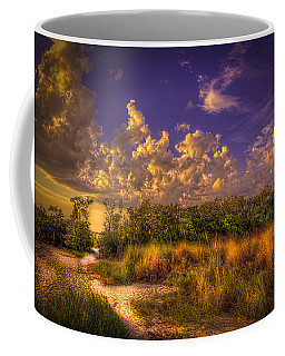 Mangrove Path Coffee Mug
