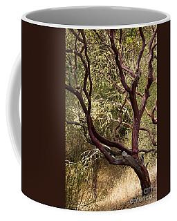Manzanita Tree Coffee Mug by Suzanne Luft