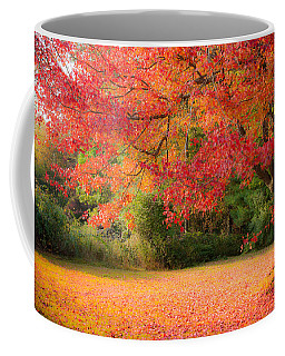 Coffee Mug featuring the photograph Maple In Red And Orange by Jeff Folger