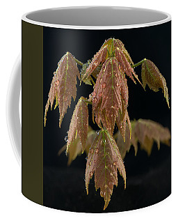 Maple Leaves With Water Drops Coffee Mug
