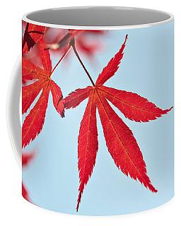 Maple Reflection Coffee Mug