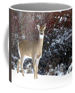 March Snow And A Doe Coffee Mug