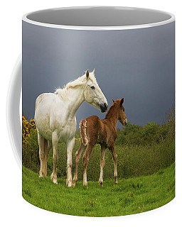 Mare And Foal, Co Derry, Ireland Coffee Mug