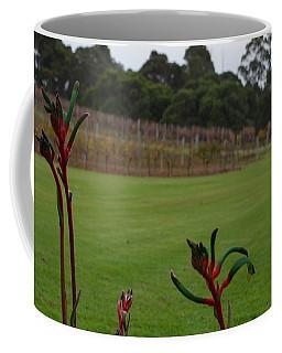 Margaret River Vineyard 1.2 Coffee Mug by Cheryl Miller