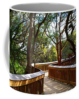 Maritime Forest Boardwalk Coffee Mug by Kathryn Meyer
