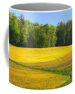 Coffee Mug featuring the photograph Maryland Country Roads - Disappearing Into Gold - Farm Fields-c  by Michael Mazaika