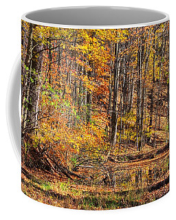 Coffee Mug featuring the photograph Maryland Country Roads - Reflection Amidst The Colorful Noise No. 1 - Catoctin Mountains by Michael Mazaika