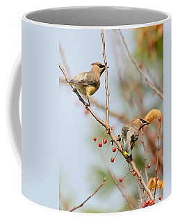 Coffee Mug featuring the photograph Masked Duo by Kerri Farley