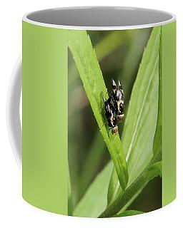 Mating Fruit Flies Coffee Mug