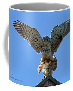 Mating Kestrels Coffee Mug