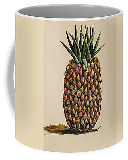 Maui Pineapple 3 Coffee Mug
