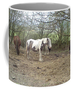 May Hill Ponies 1 Coffee Mug