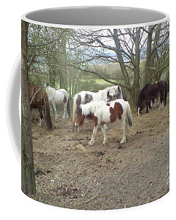 May Hill Ponies 2 Coffee Mug