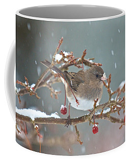 Maybe A Cherry Or Maybe Not Coffee Mug