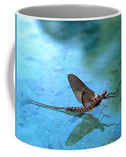 Mayfly Reflected Coffee Mug