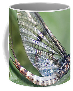 Mayfly Coffee Mug