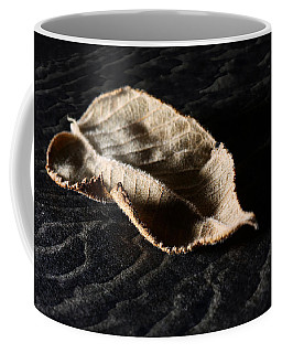 Coffee Mug featuring the photograph Meanwhile The World Goes On by Lauren Radke