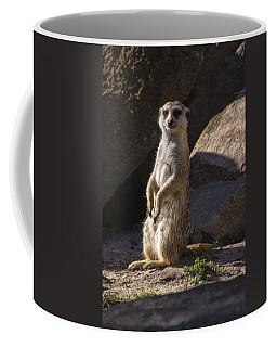 Meerkat Looking Forward Coffee Mug