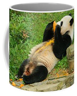 Mei Xiang Chowing On Frozen Treat Coffee Mug