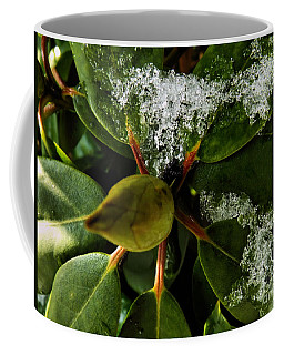 Coffee Mug featuring the photograph Melting Crystals by Robyn King
