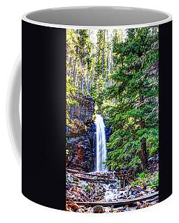 Memorial Falls In Montana Coffee Mug