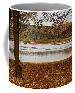 Mendon Ponds Coffee Mug