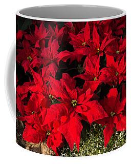 Merry Scarlet Poinsettias Christmas Star Coffee Mug