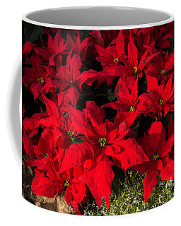 Merry Scarlet Poinsettias Christmas Star Coffee Mug