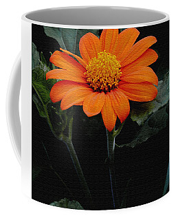 Mexican Sunflower Coffee Mug by James C Thomas