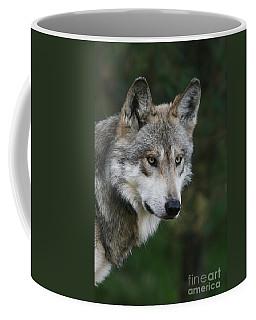 Mexican Wolf #4 Coffee Mug