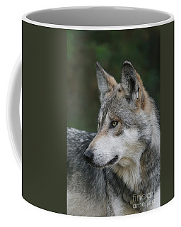 Mexican Wolf #6 Coffee Mug by Judy Whitton