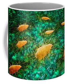 Microscopic View Of A Group Coffee Mug