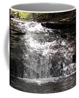 Middle Chapel Brook Falls Coffee Mug