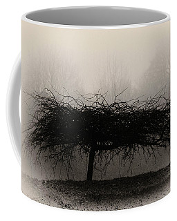 Middlethorpe Tree In Fog Sepia - Award Winning Photograph Coffee Mug