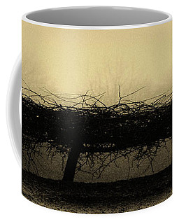 Middlethorpe Tree In Fog Antique Yellow Panorama Coffee Mug by Tony Grider