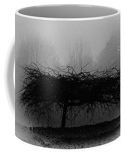 Middlethorpe Tree In Fog Bw Coffee Mug